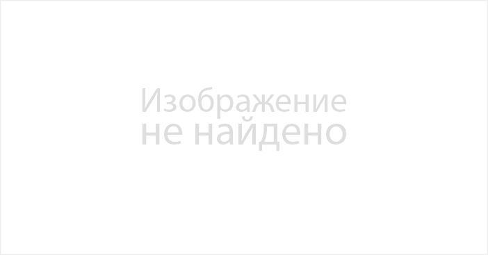 Конные полицейские патрулируют дачи Петропавловска